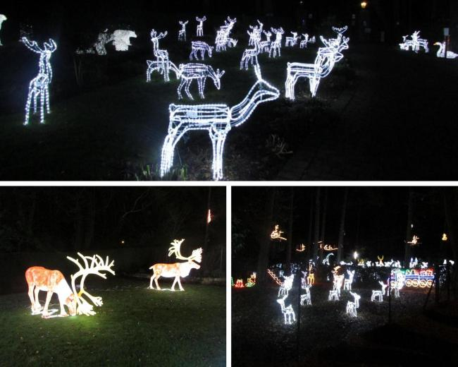 Chavey Down Christmas lights set to return before the end of November