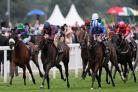 The Tin Man crowned best in Diamond Jubilee Stakes